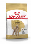 ADULT CANICHE ROYAL CANIN